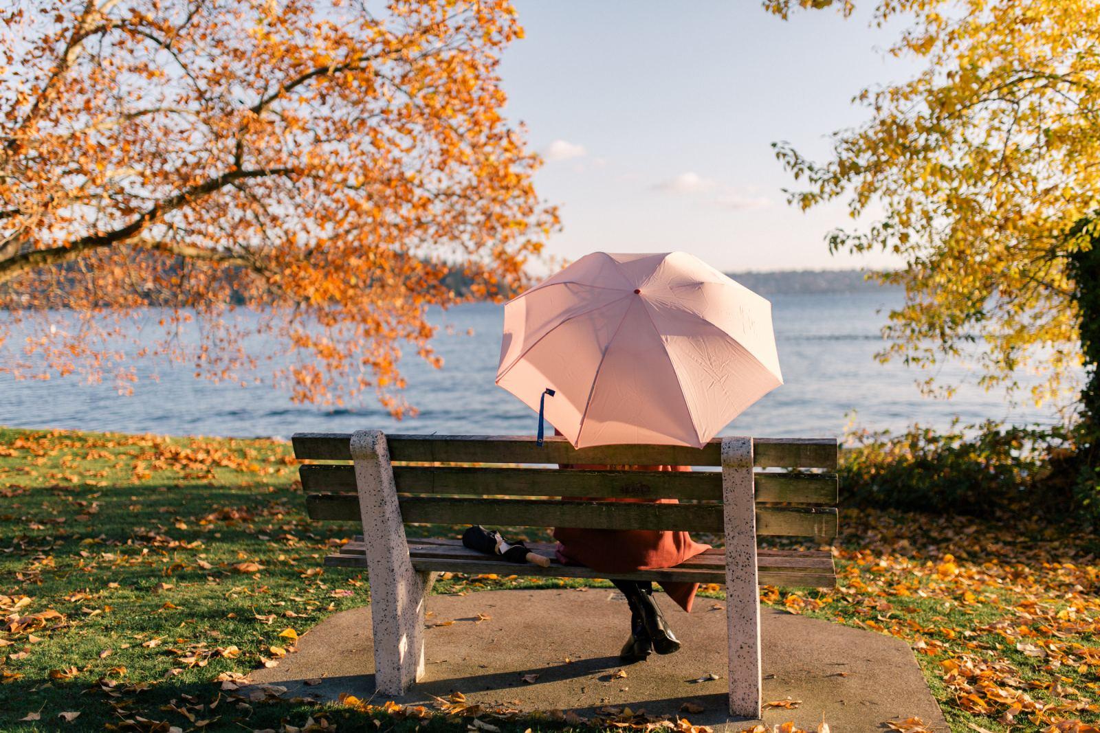 the perfect umbrella